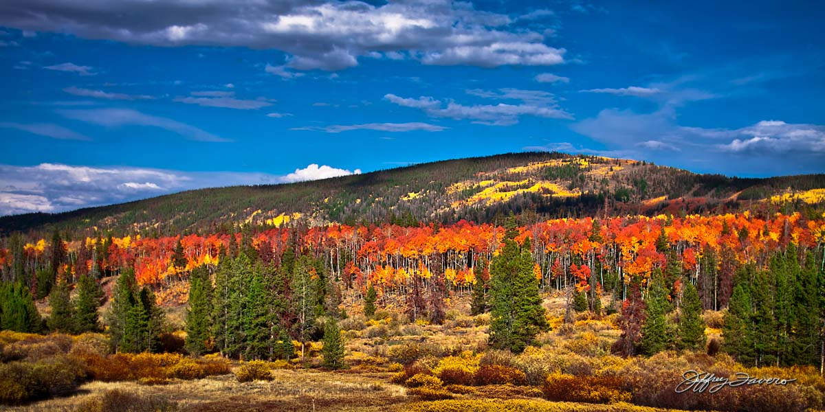 Now+is+the+Time+to+Enjoy+Fall+Scenery